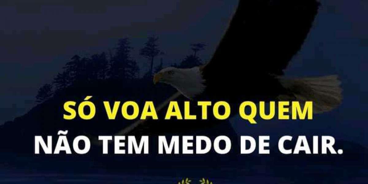 DIA 16 DO MEU DIÁRIO DE BORDÔ